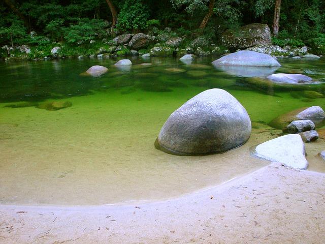 בריכות שחייה אקולוגיות