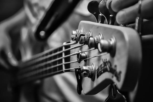 גיטרה חשמלית למתחילים